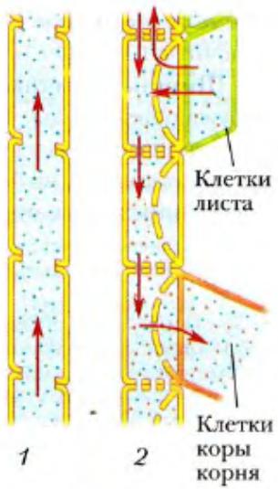 Схема электрическая принципиальная ц20-05